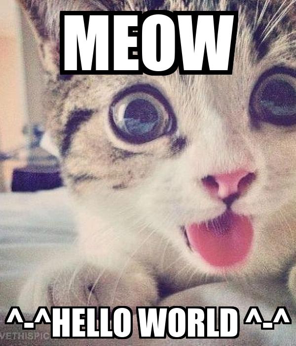 MEOW ^-^HELLO WORLD ^-^