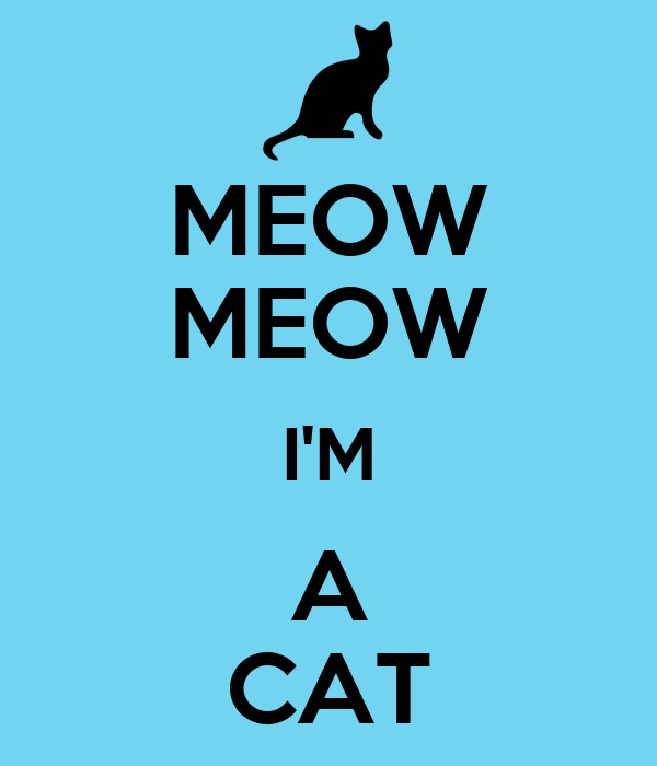 MEOW MEOW I'M A CAT