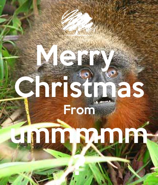 Merry  Christmas From ummmmm ?