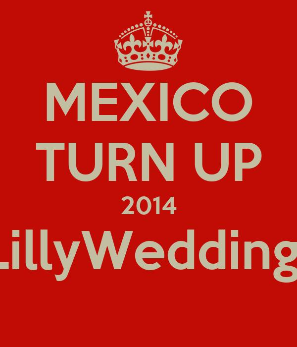 MEXICO TURN UP 2014 #LillyWedding14