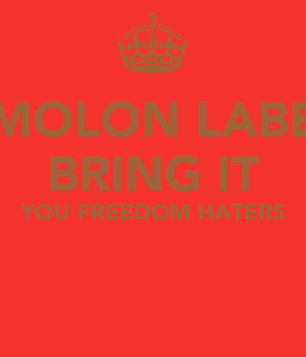 MOLON LABE BRING IT YOU FREEDOM HATERS