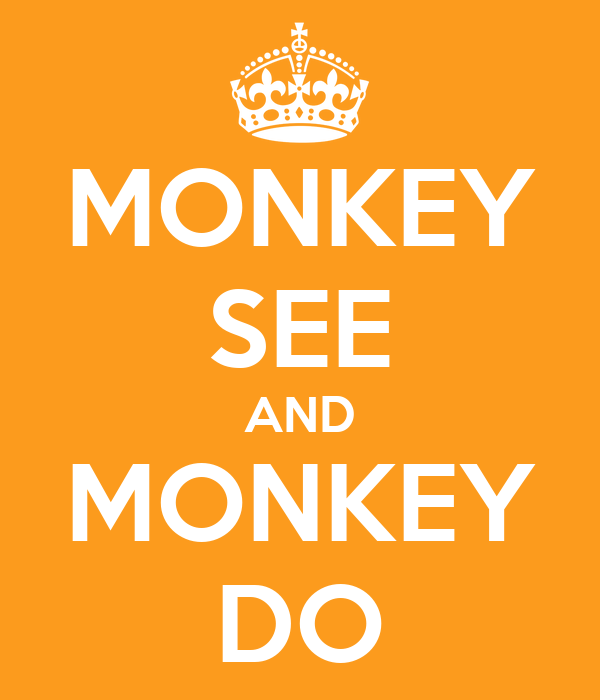 MONKEY SEE AND MONKEY DO
