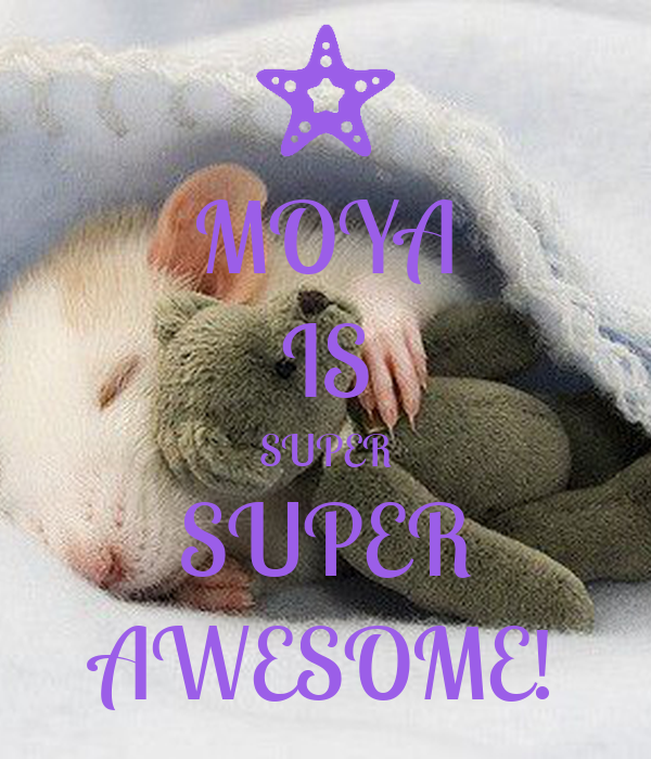 MOYA IS SUPER SUPER AWESOME!