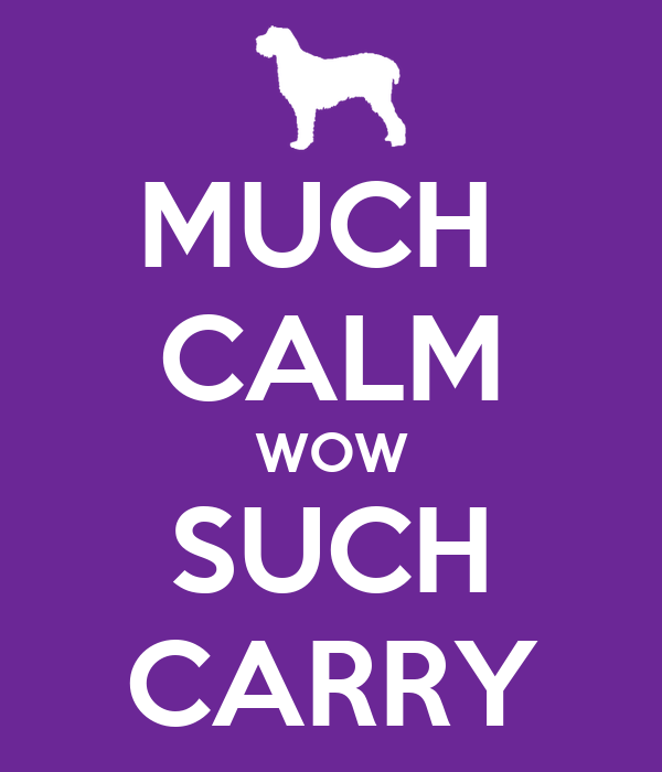 MUCH  CALM WOW SUCH CARRY