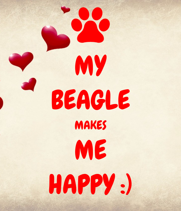MY BEAGLE MAKES ME HAPPY :)
