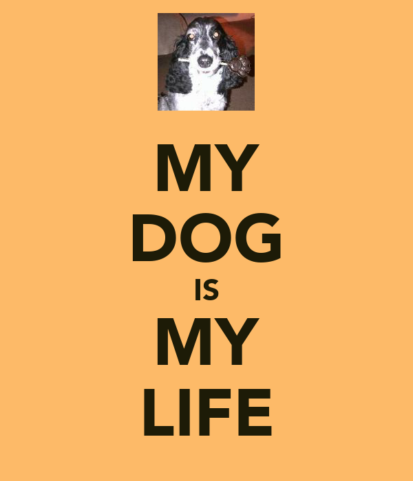 MY DOG IS MY LIFE
