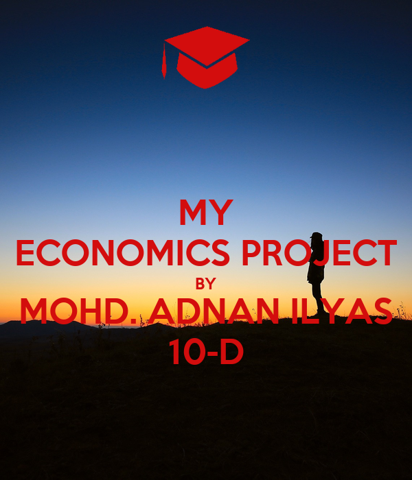 MY ECONOMICS PROJECT BY MOHD. ADNAN ILYAS 10-D