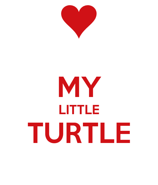 MY  LITTLE TURTLE