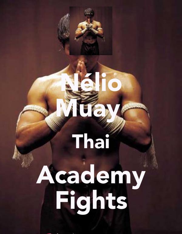 Nélio Muay  Thai Academy Fights