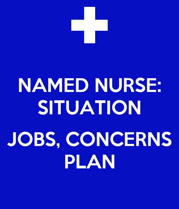 NAMED NURSE: SITUATION  JOBS, CONCERNS PLAN