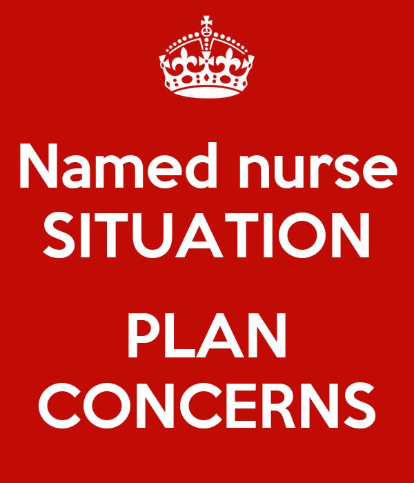 Named nurse SITUATION  PLAN CONCERNS