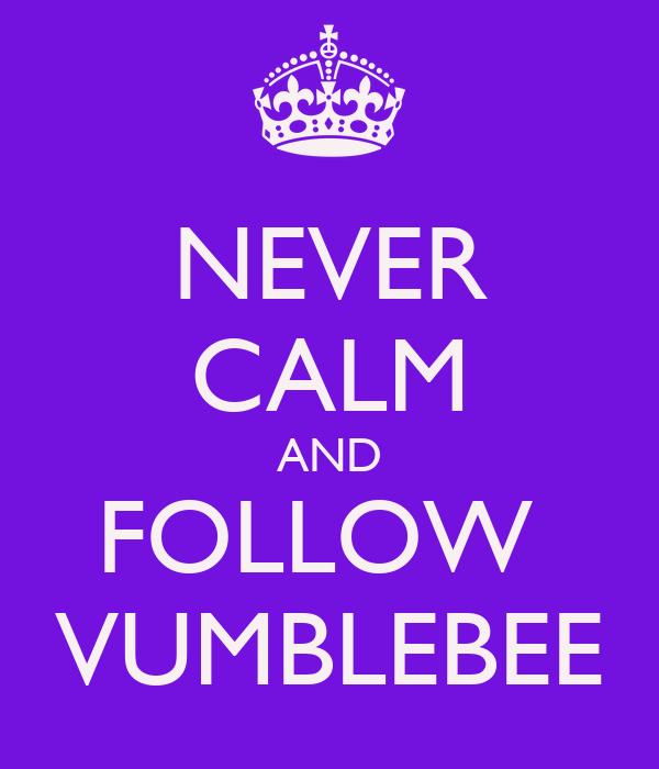 NEVER CALM AND FOLLOW  VUMBLEBEE