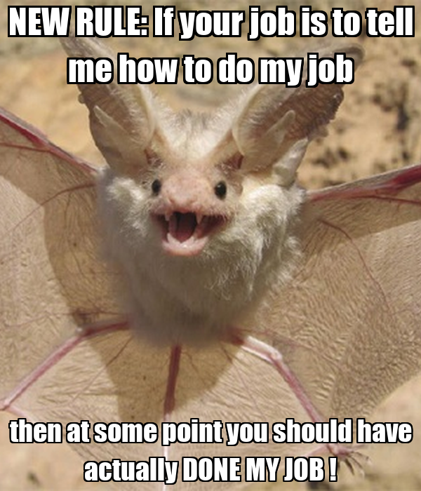 new rule  if your job is to tell me how to do my job then