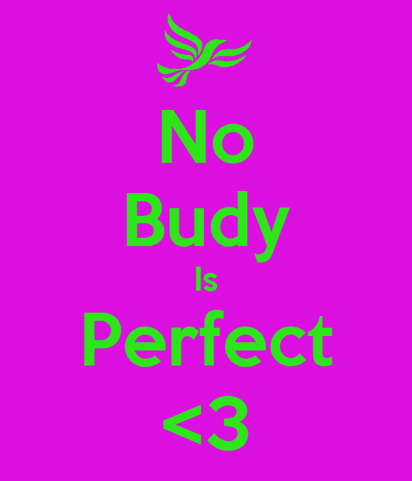 No Budy Is Perfect <3