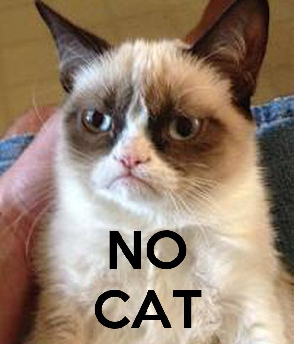 NO CAT