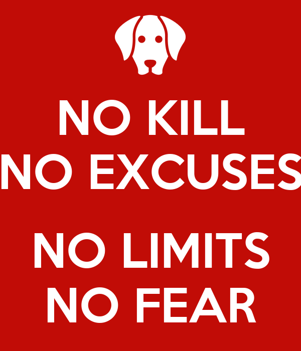 NO KILL NO EXCUSES  NO LIMITS NO FEAR