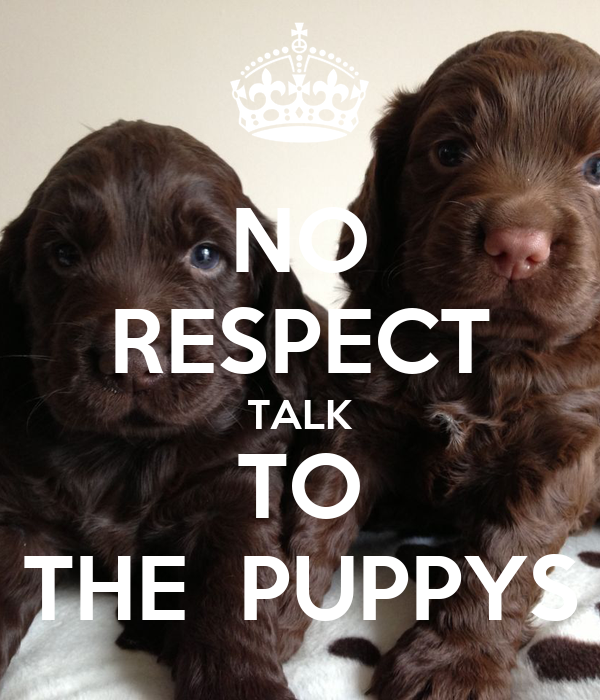 NO RESPECT TALK TO THE  PUPPYS