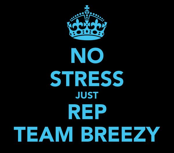 NO STRESS JUST REP TEAM BREEZY