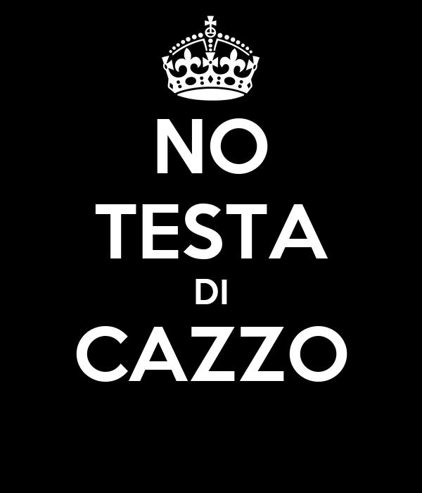 NO TESTA DI CAZZO