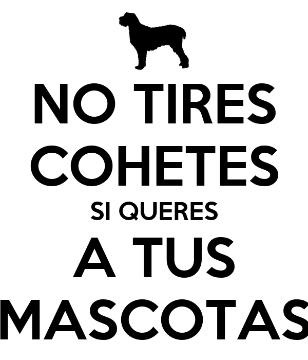 NO TIRES COHETES SI QUERES A TUS MASCOTAS