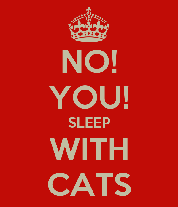 NO! YOU! SLEEP WITH CATS