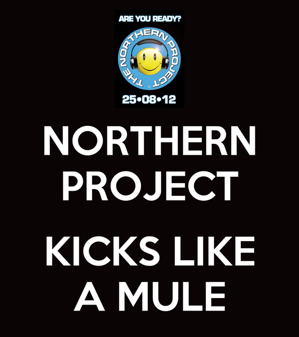 NORTHERN PROJECT  KICKS LIKE A MULE
