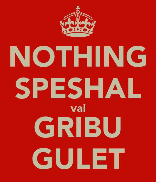 NOTHING SPESHAL vai GRIBU GULET