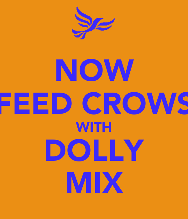 NOW FEED CROWS WITH DOLLY MIX
