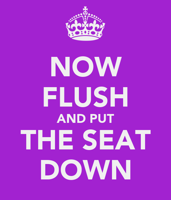 NOW FLUSH AND PUT THE SEAT DOWN