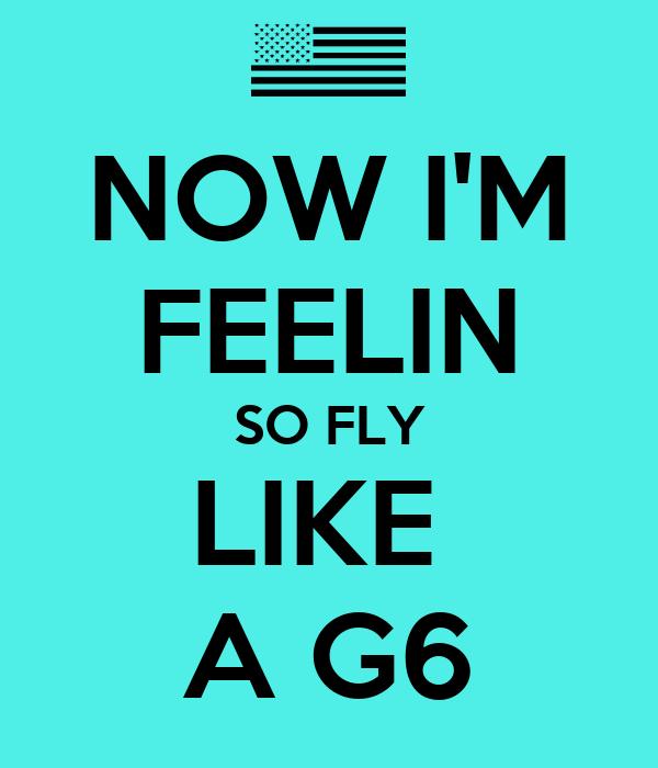 NOW I'M FEELIN SO FLY LIKE  A G6