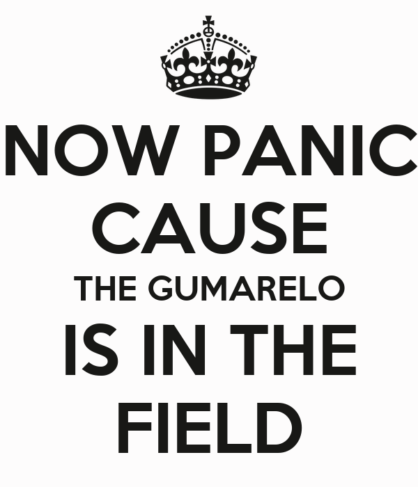 NOW PANIC CAUSE THE GUMARELO IS IN THE FIELD