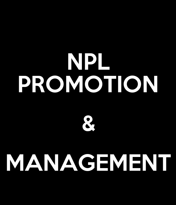 NPL PROMOTION & MANAGEMENT