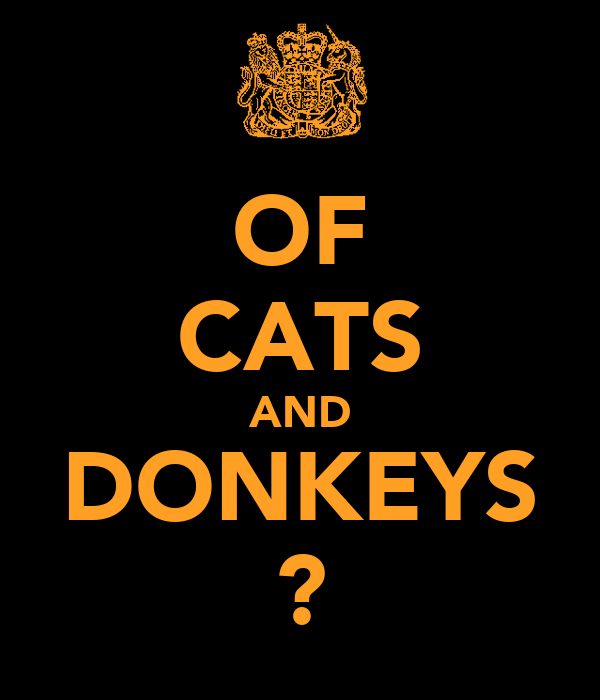 OF CATS AND DONKEYS ?