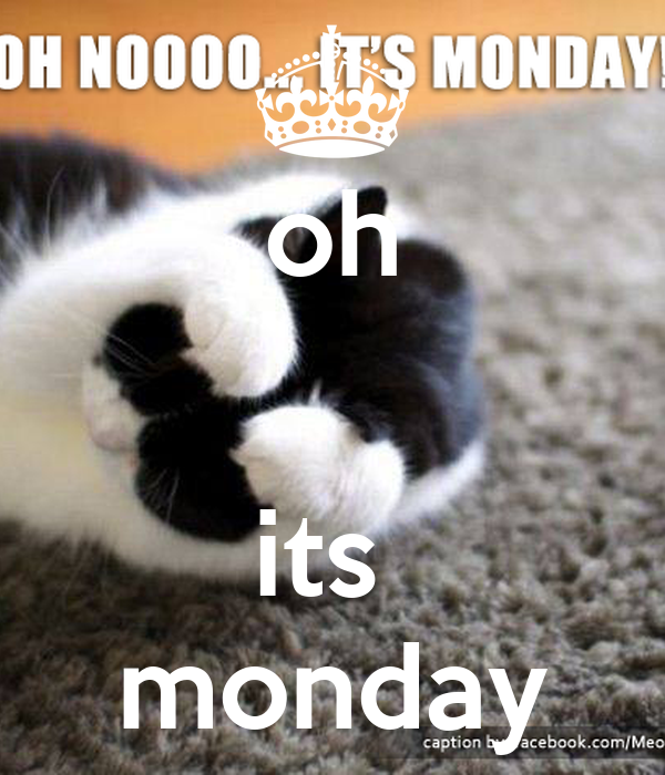 oh   its  monday