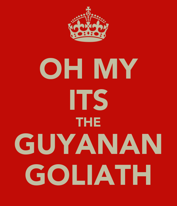OH MY ITS THE GUYANAN GOLIATH