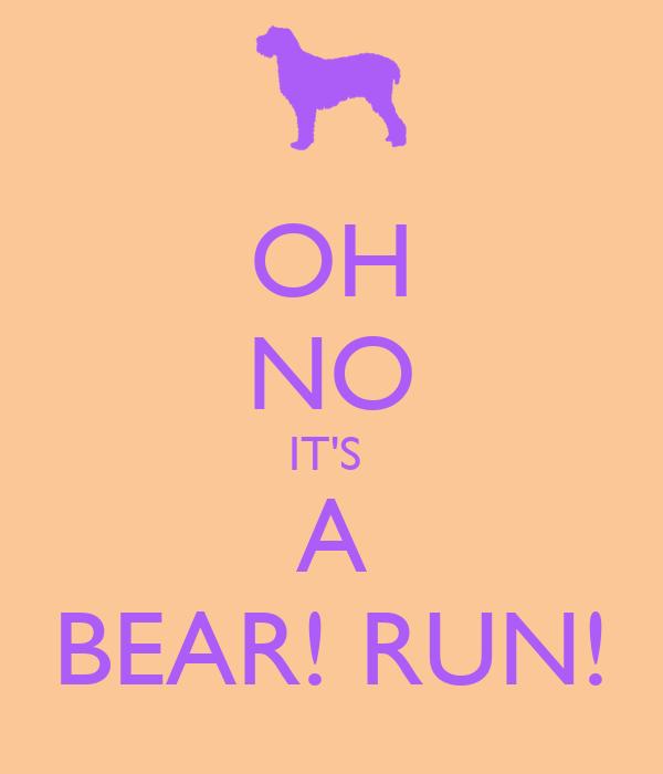OH NO IT'S  A BEAR! RUN!