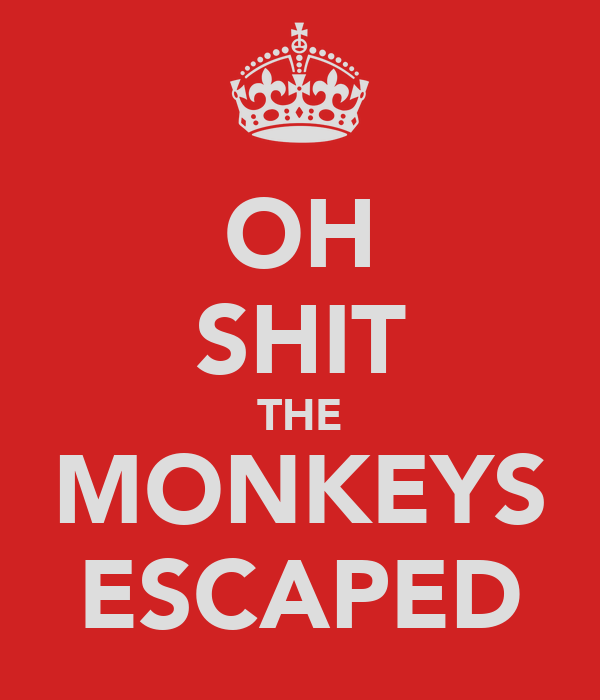 OH SHIT THE MONKEYS ESCAPED