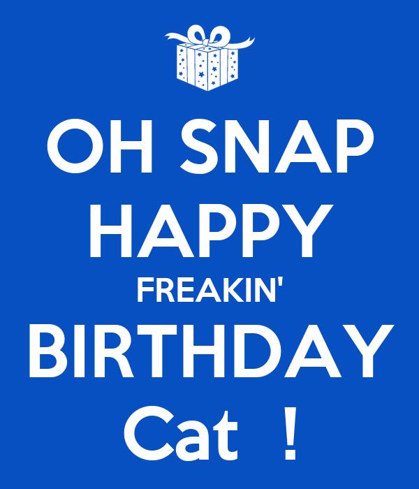 OH SNAP HAPPY FREAKIN' BIRTHDAY Cat ! Poster | chris ...