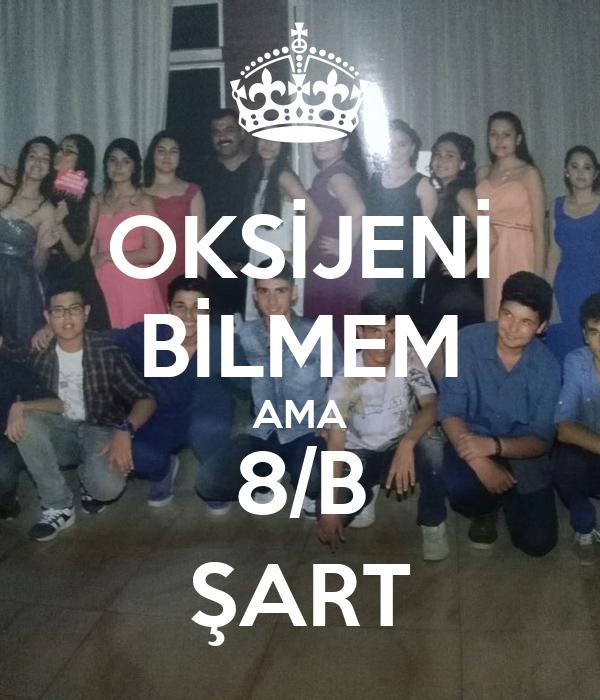 OKSİJENİ BİLMEM AMA 8/B ŞART