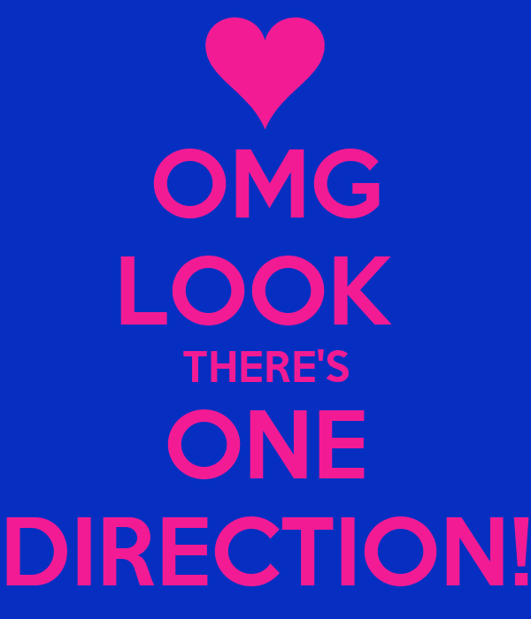 OMG LOOK  THERE'S ONE DIRECTION!