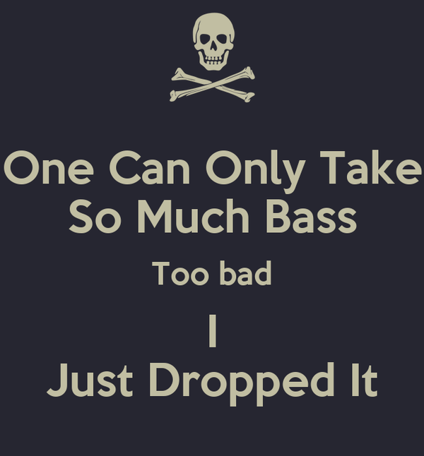One Can Only Take So Much Bass Too bad I Just Dropped It