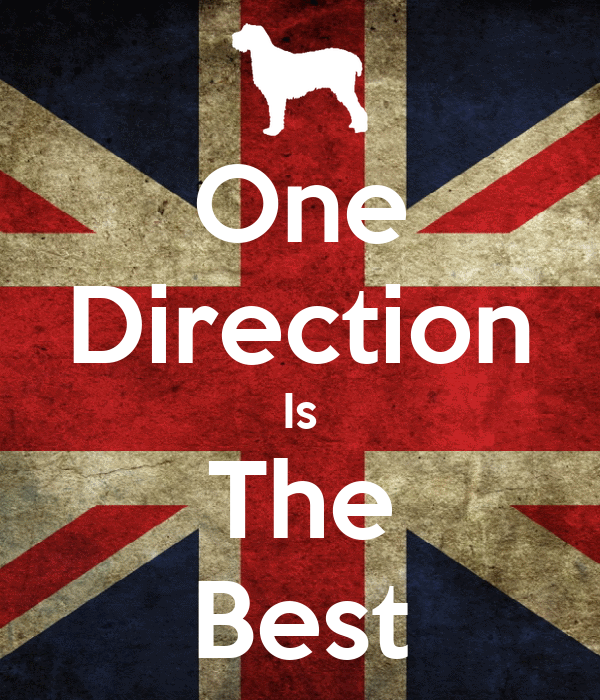 One Direction Is The Best