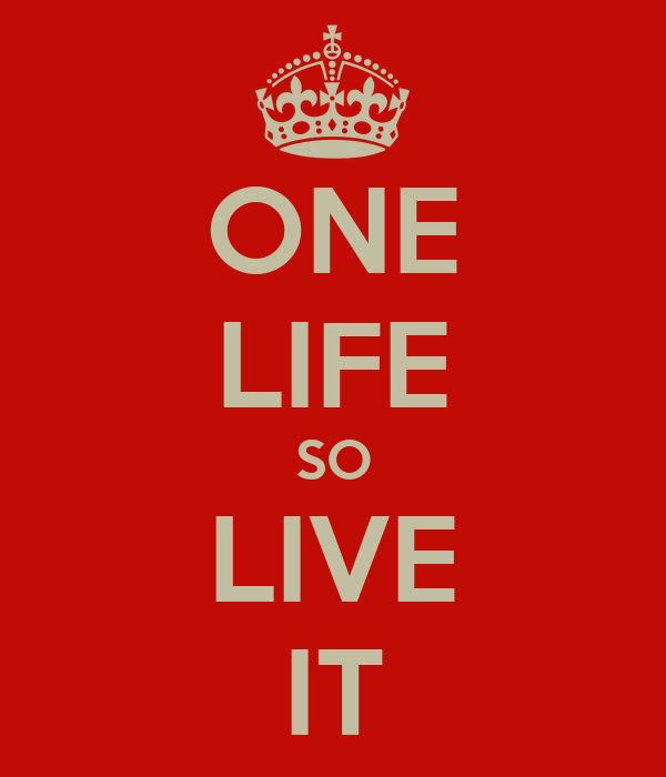 ONE LIFE SO LIVE IT