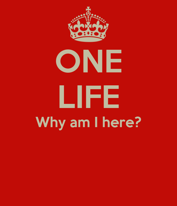 ONE LIFE Why am I here?
