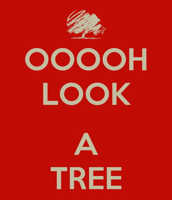 OOOOH LOOK  A TREE