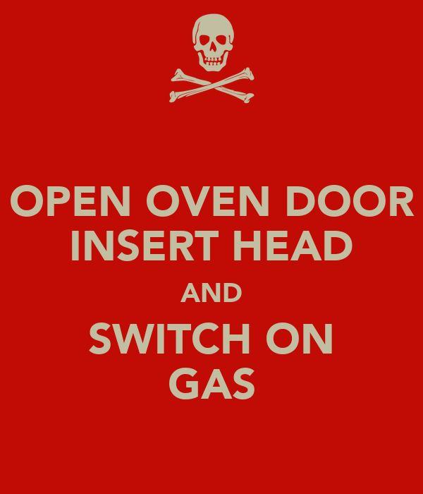 OPEN OVEN DOOR INSERT HEAD AND SWITCH ON GAS