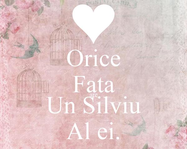 Orice Fata are Un Silviu Al ei.