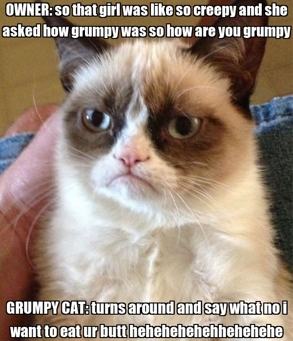 OWNER: so that girl was like so creepy and she asked how grumpy was so how are you grumpy GRUMPY CAT: turns around and say what no i want to