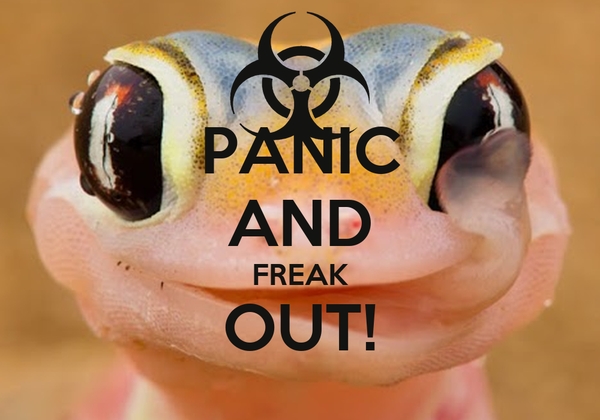 PANIC AND FREAK OUT!