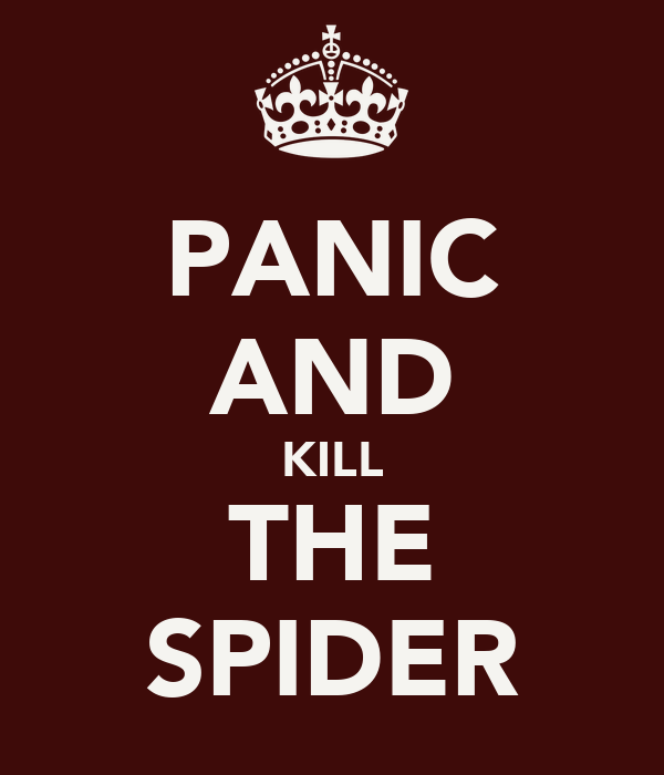 PANIC AND KILL THE SPIDER